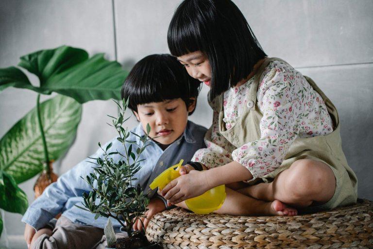 語文教材 : 怎麼進行自然教育?